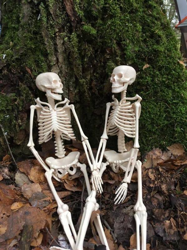 скелетики.jpg
