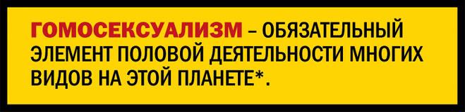 28504-MjBiNDA2ZWUwOA