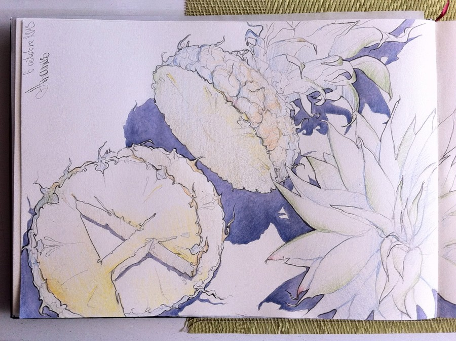 ананасы стр1