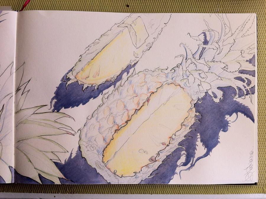 ананасы стр2