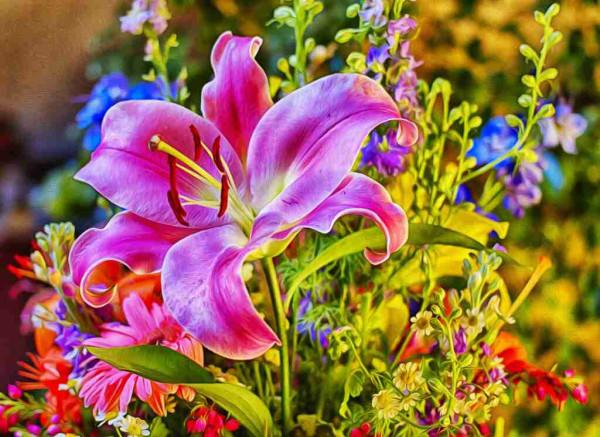 Цветы лилия.jpg