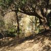 Escondido Grotto