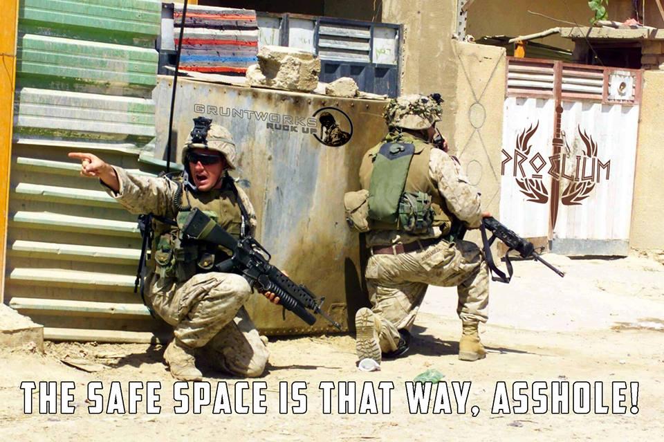 safe-space-proelium