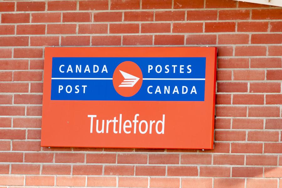turtlefort (27)
