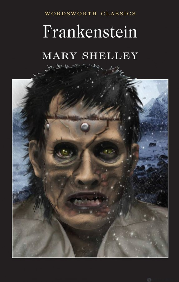 the creativity of mary shelley in the creation of horror in the novel frankenstein The controversial issues of 'frankenstein' by mary shelley 'frankenstein' is a gothic horror novel written by mary shelley an ambitious scientist, victor frankenstein, creates a creature from human body parts in secret.