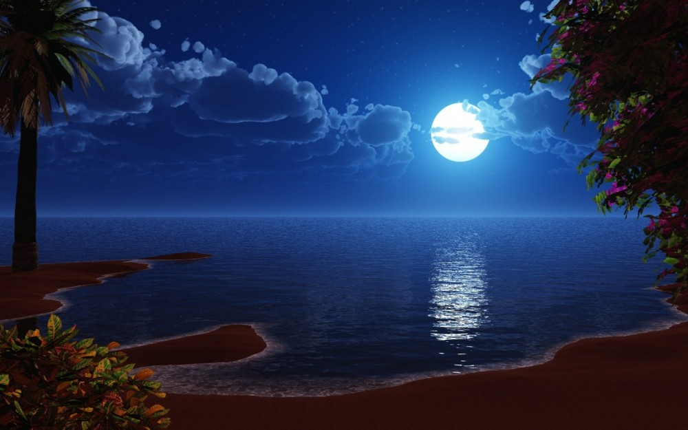 =3D-graphics_Beach_night_024139_
