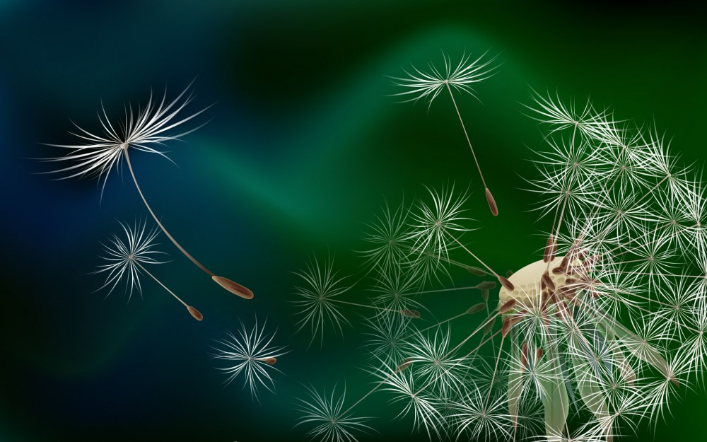 3D-graphics_The_seeds_of_a_dandelion_015837_