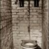 outside-toilet.jpg