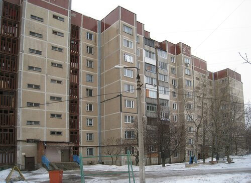 Life and density. John Hughes house in Donetsk.