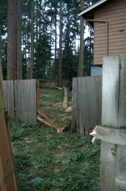 2006 Windstorm Damage