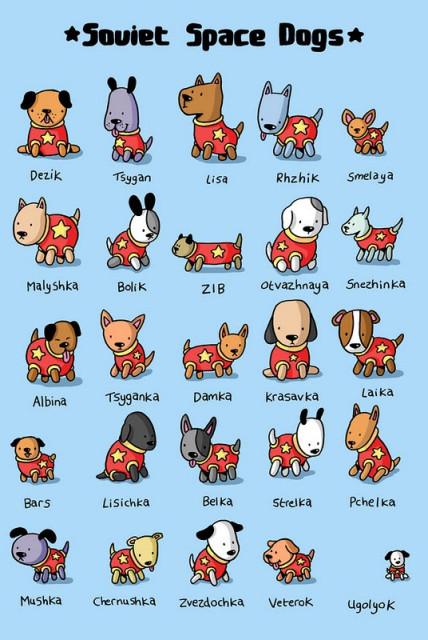 список собак побывавших в Космосе