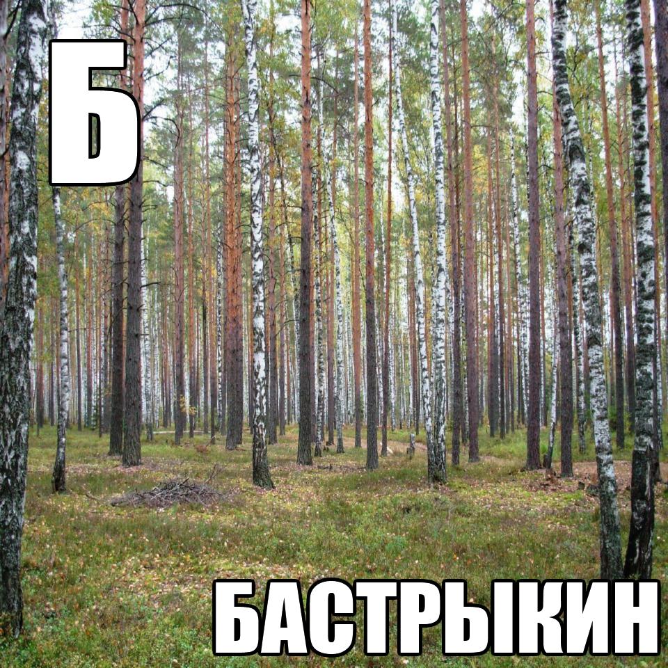 Бастрыкин