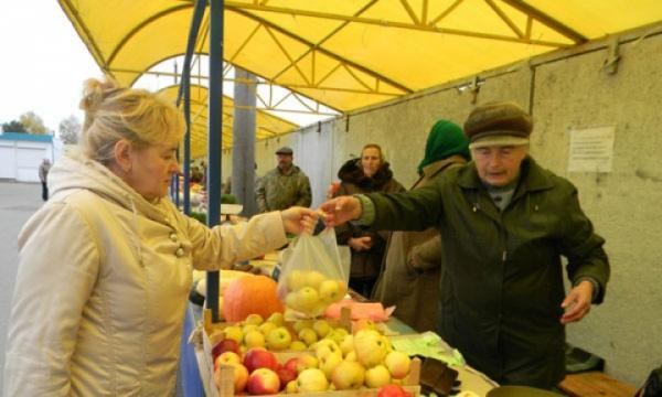 Взгляд из Минтруда: жить в России стало дешевле