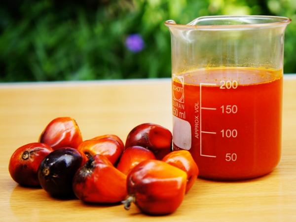 Россия наращивает импорт пальмового масла: травитесь на здоровье?