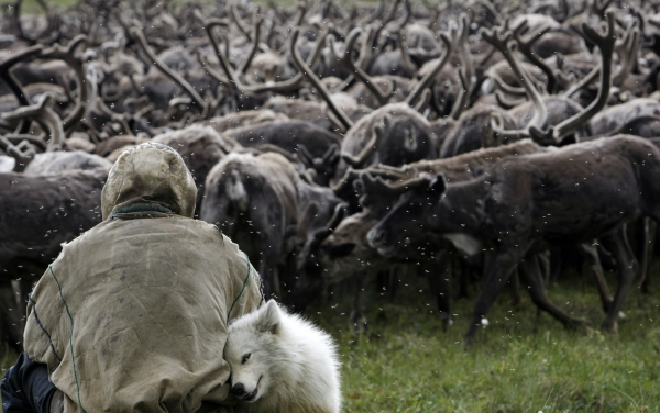 На Ямале успешно ликвидирована чрезвычайная ситуация