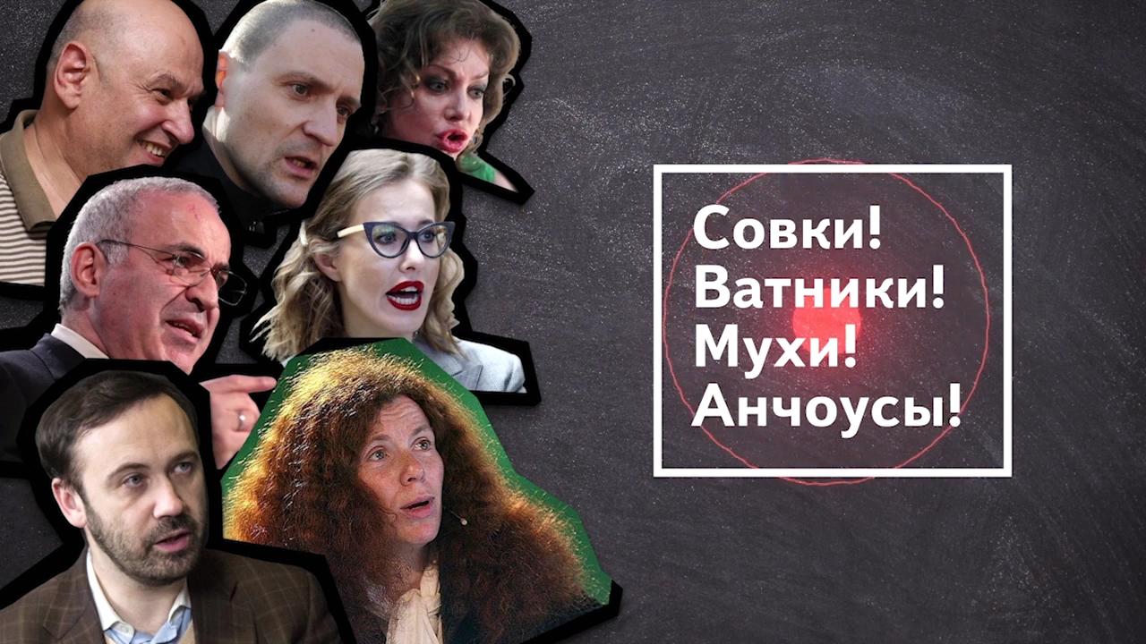 31-Леваки и бандеровцы атакуют Россию!  4 серия