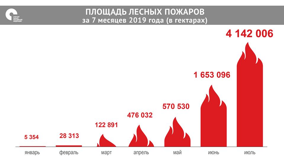 За первые шесть месяцев 2019 года возникло 7,6 тыс. лесных пожаров