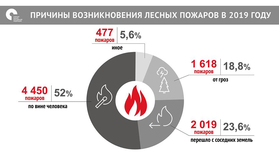Причины возникновения лесных пожаров в 2019 году