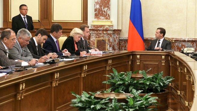 20130627-Заседание Правительства-pic2