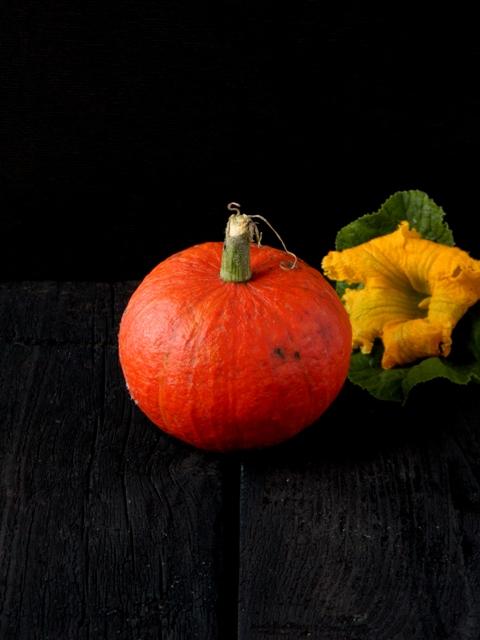 Pumpkin (2)о