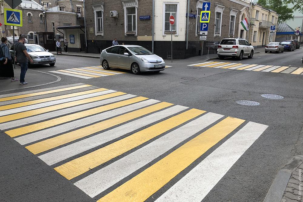 Зебра желтая фото