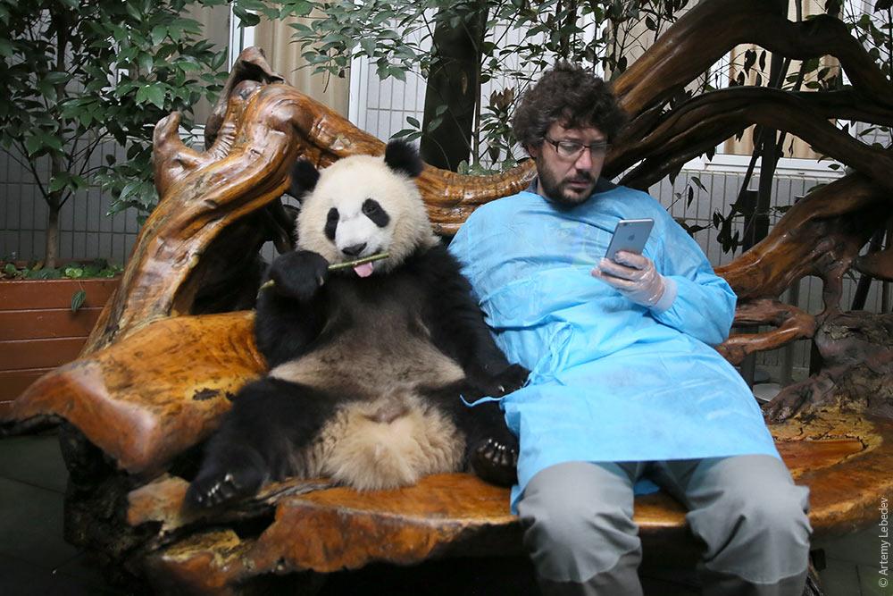 КитайЭтноЭксп: обнимашки в Чэнду. Потому что мы панда!