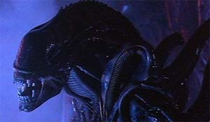 Alien; This image is taken from http://www.cinerama.no/html/review/69861591.html