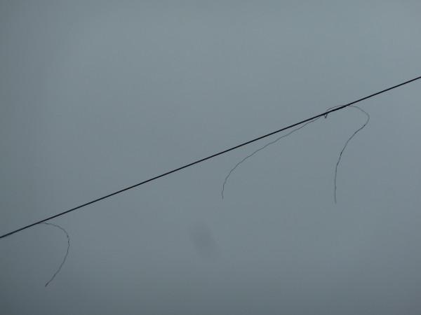 P1100535