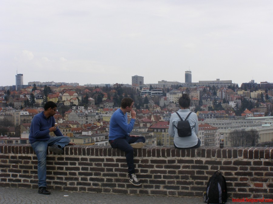 Cizinci na zdi