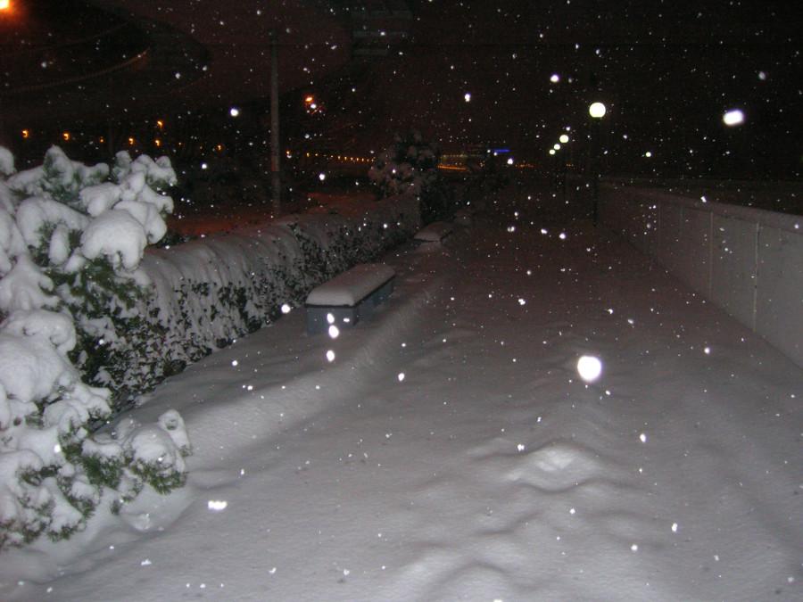 Sníh v Praze - kuriozita