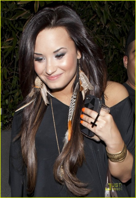 Does Anyone Know Where To Get Demi Lovato S Totally Wicked Awesome Feather Earrings