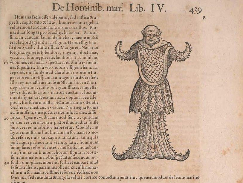 Historiae_animalium_liber_IV_15383314130_1486165705.jpg.814x610_q85