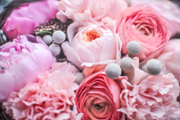Цветы с днем рождения картинки розы пионовидные