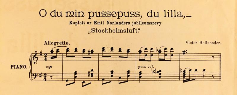 Carl Johnn's Musikhandel, Stockholm (примерно 1904 год)
