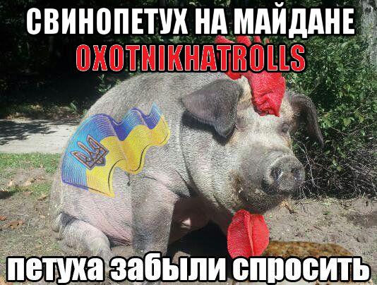 oxotnikhatrolls на майдане ;D
