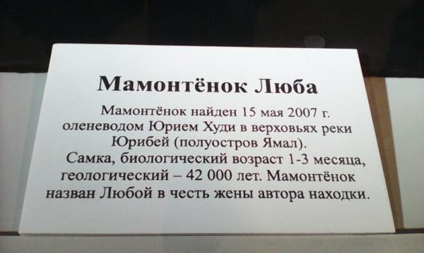 t0VBTxRgsQM