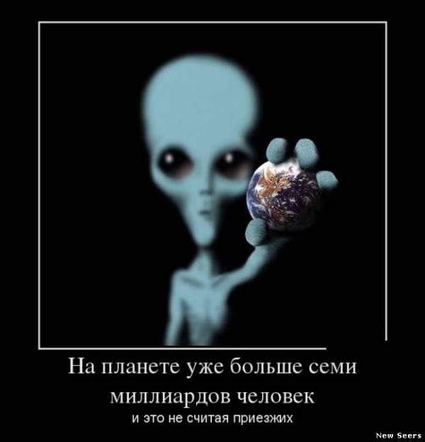 фото серые инопланетяне
