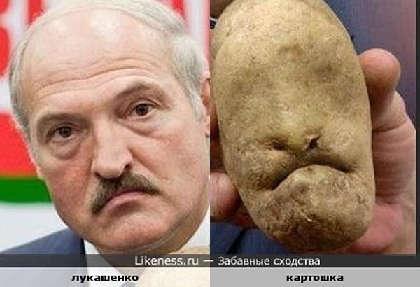 Lukashenko_potato_big