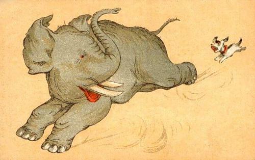 Кто тут Моська, кто тут слон? Или куда же идет караван?