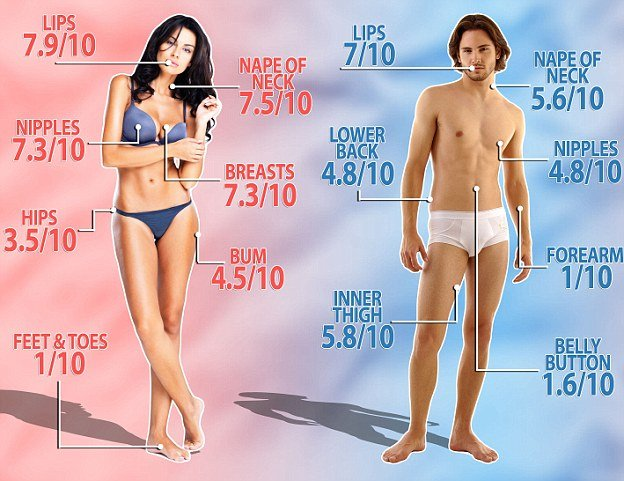 eroticheskie-zoni-cheloveka