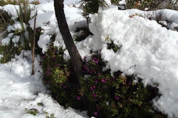 hiver 064