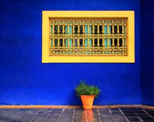 751px-Marrakech_Majorelle_Garden_2011