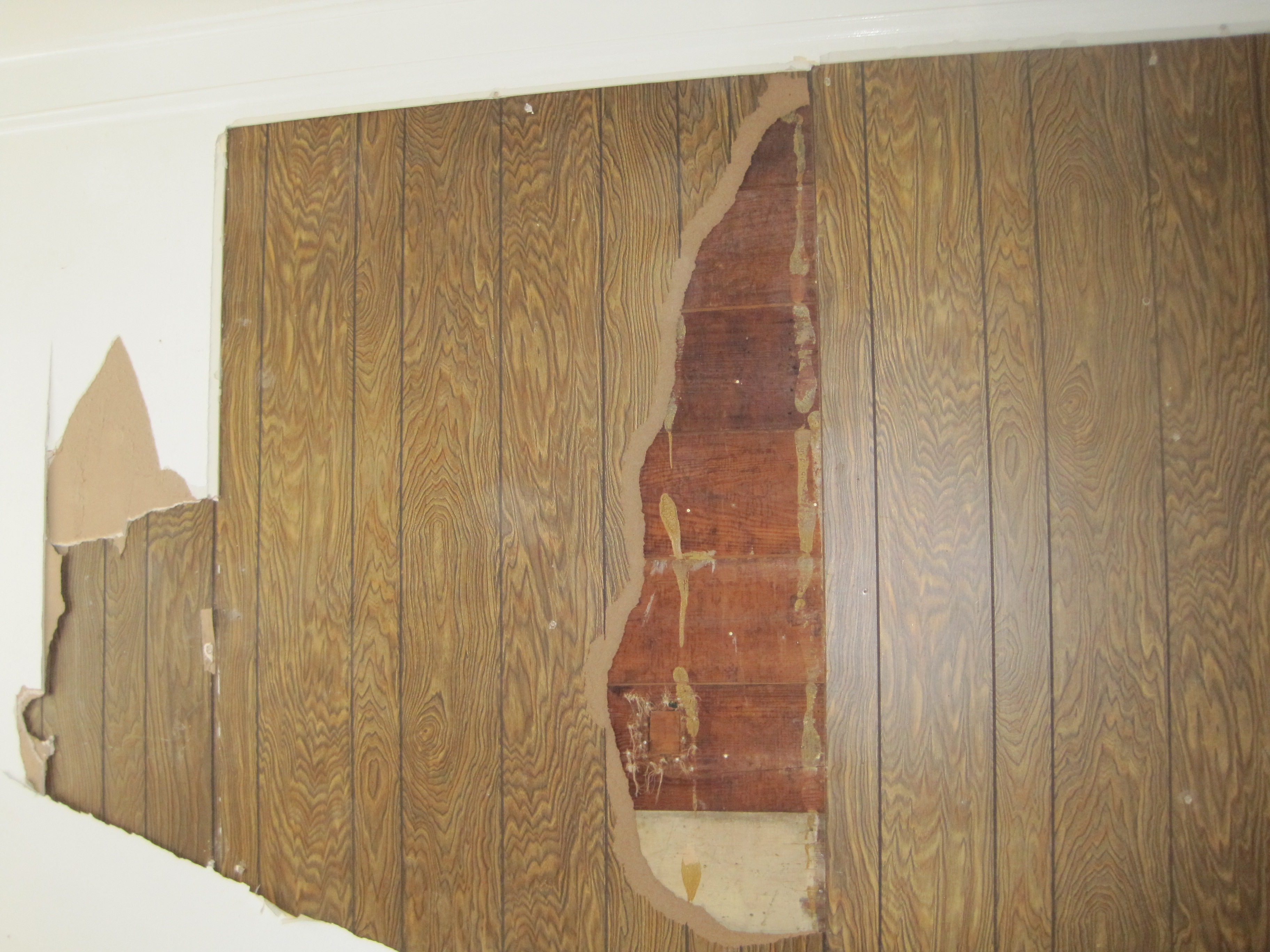 "70""s paneling"