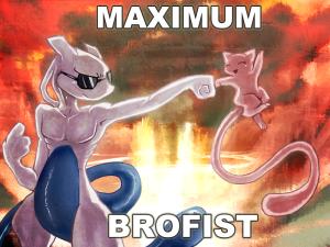 brofist-6616