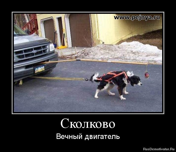 1317129233-skolkovo (1)