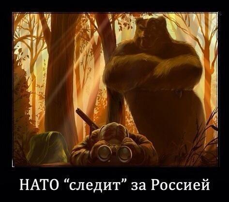 11498152_900.jpg