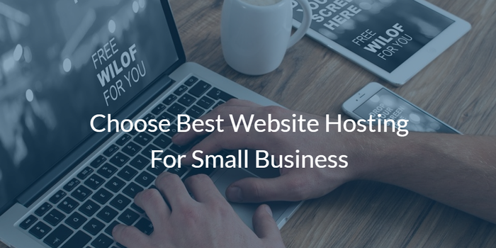 Web hosting is a service that allows organizations and individuals to post a website