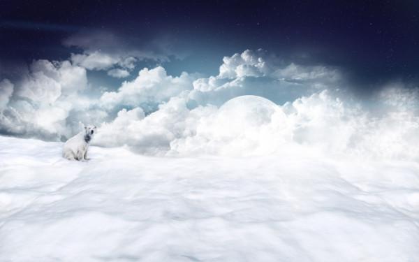 158672_belyj-medved_sneg_luna_oblaka_1920x1200_(www.GdeFon.ru)