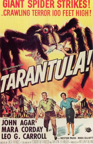 Tarantula006.jpg