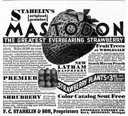 mastodon930.jpg